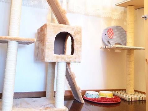 猫ホテル施設1